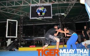 Brazilian Jiu Jitsu Gi / No Gi Program @Tiger MuayThai