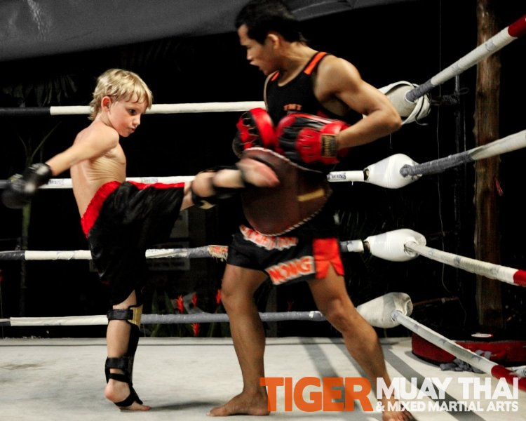Fighting Thai » A Day in the Life at Tiger Muay Thai ...