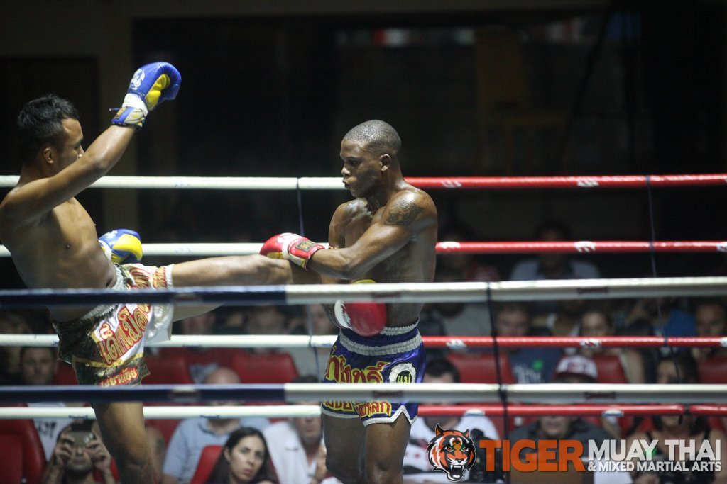 Fighting Thai » 'Tiger Muay Thai & MMA Training Camp Guest ...